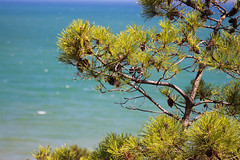 Sea view (Rens Bressers) Tags: travel sea summer cliff sun holiday detail portugal coast algarve southportugal