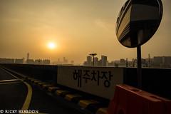 <---- The Sun is This Way (Ricky Reardon) Tags: korea seoul carpark apocalyptic yongsan