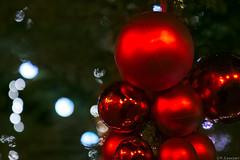 Souvenirs de Noel (Yannick 67) Tags: france canon rouge bokeh decoration illumination arbres alsace nol nuit march boules flou sapin basrhin molsheim 70d
