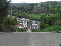 Baldwin Street - Steepest in the World