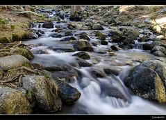 Río Navacerrada - 6/8 (Pogdorica) Tags: madrid rio agua sierra seda barranca navacerrada efectoseda sendaortiz