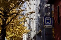 Tokyo Impressions (Matthias Harbers) Tags: city urban tree station sign japan photoshop buildings subway tokyo ginza 1 nikon raw nef v3 elements transportation labs dxo hibiya topaz nikon1 chioda 1nikon nikon1v3 1nikkor10100mmf4056vr