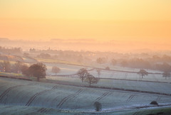 High Mist (David Ball Landscape Photography) Tags: uk greatbritain trees light england sky mist field clouds sunrise canon landscape photography dawn movement frost glow outdoor patterns foggy hills tones nottinghamshire zoomlens dorkethead