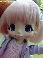 KIKIPOP★ (cute-little-dolls) Tags: new cute doll japanesedoll azone kikipop kinokojuice sampledoll