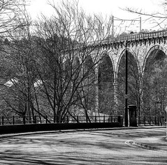 Viaduct. (CWhatPhotos) Tags: pictures road camera city uk bridge trees england white black tree art monochrome station digital train that lens four photography prime mono foto durham with view image artistic pics north picture trains pic olympus images viaduct east have photographs photograph fotos micro which fit contain 43 thirds em10 mft esystem cwhatphotos olympusem10