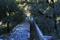 Sur du pont (Giorden) Tags: pont