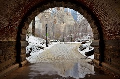 Central Park-Inscope Arch, 01.24.15 (gigi_nyc) Tags: nyc newyorkcity winter snow centralpark inscopearch winterstormiola