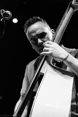 Daniel Meade and the Flying Mules-1 (redrospective) Tags: people music white london closeup musicians ma concert live gig instruments doublebass concentrating musicphotography o2shepherdsbush markferrie 20160715 danielmeadeandtheflyingmules