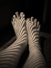 Footnotes (Sea Moon) Tags: feet shadows stripes blinds light sunlight toes legs