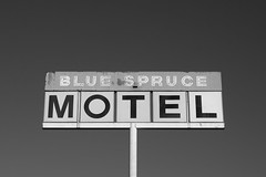 Spruced up (dangr.dave) Tags: gallup nm newmexico downtown historic architecture neon neonsign hotel motel bluesprucemotel bluespruce spruce