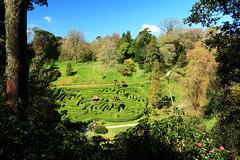 Glendurgan Garden (Mike.Dales) Tags: cornwall maze nationaltrust glendurgan glendurgangarden