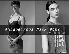 "Survey for Second Life ""Androgynous Mesh Body"" (Beca Staheli) Tags: boy woman man male girl female mesh body avatar crossdressing h secondlife androgynous"