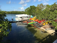 Kayak Launch (MyFWCmedia) Tags: kayak fwc myfwc myfwccom wildlife florida floridafishandwildlife conservation johnpennekamp keylargo flkeys floridakeys floridastateparks johnpennekampcoralreefstatepark park pennekamp lovefl