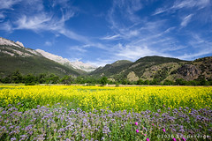 France - Hautes-Alpes (beppeverge) Tags: france landscape alpi francia paesaggio beppeverge