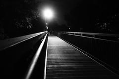 Nightwalker (Sony RX100M2) (stefankamert) Tags: stefankamert nightwalker street black bw sw noir noiretblanc sony rx100 rx100m2 blackandwhite blackwhite bridge light lowlight night highiso