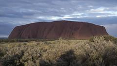 _DSC9826 (slackest2) Tags: uluru ayres rock northern territory red scrub trees sky