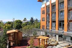 View of Playground