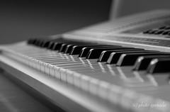 B&W Impressions - Keyboard (gporada) Tags: gporada bw keyboard bokeh blackwhite sonya7ii samyang samyang1485 klavier music oss manual noautofcus ilce7m2 blackwhitephotos welltaken phvalue world100f depthoffield dof schrfentiefe musik einfarbig tasteninstrument instrument klaviertastatur spiegelungen reflections