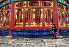 Temple of Heaven - Beijing (Phil Marion (50 million views - thanks)) Tags: philmarion 5photosaday beauty beautiful travel vacation candid beach woman girl boy wedding people explore  schlampe      desnudo  nackt nu teen     nudo   kha thn   malibog    hijab nijab burqa telanjang  canon  tranny  explored nude naked sexy  saloupe  chubby young nubile slim plump sex nipples ass hot xxx boobs dick dink