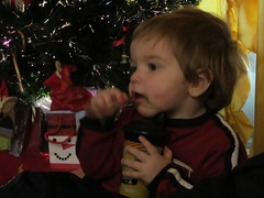 Christmas 2011 017 (livesthislife) Tags: christmas2011