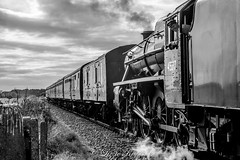 Day 222, 2016, a photo a day. (lizzieisdizzy) Tags: howiemarsh stanier class 5 460 locomotive steam train railtrack track shunting carriages wheels cogs traindriver 45337 plumes engine funnell