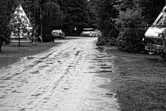 We Packed Up in the Rain (joeldinda) Tags: puddle rain driveway drive cheboyganstatepark vacation weather campground tipi teepee august 3245 lawn tree camper d500 nikond500 nikon blackandwhite monochrome 2016 bw 44365