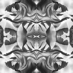Kaleidoscopic Floral 4.2 (Ursa Davis) Tags: america north abstract art artist artwork creative davis decor digital eclectic fine flora floral flower flowers for garden geometric home international kaleidoscope kaleidoscopic manipulation mix modern nature northwest oregon organic pacific petal petals photo photograph photographer photography photoshop portait portland purchase rose roses sale shape shapes states test united ursa ursadavis usa west wwwursadaviscom