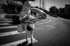 27 year old (dustin.gebhard) Tags: deadbeatgallery streetphotography ricohgr ricohgrii monochrome monochromemaniac blackwhite blackandwhite losangeles sunset blvd happy birthday 27 club