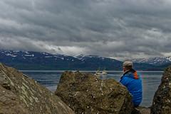 Walbeobachtung (Stephi 2006) Tags: hauganes norðurlandeystra island
