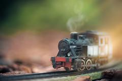 Old steam locomotive (Ro Cafe) Tags: mm planes trainsandautomobiles macro nikkormicro105f28 nikond600 macromondays toy train stream bokeh