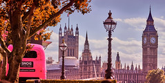Cosy Times In Houses Of Parliament (paulinuk99999 - just no time :() Tags: paulinuk99999 london south bank pink bus snog westminster parliament bigben sal70400g