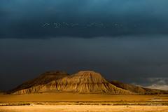 La hora de emigrar (LANTADA) Tags: nublado gris paisaje tormenta montaa aves bardenasreales vacaciones atardecer