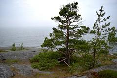 DSC_1658 (Unknown Explorer from Finland) Tags: porkkala kirkkonummi