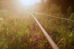 the light of happiness (JulianaKruz) Tags: nature grass light railway sunshine sunset film filmphoto 35mm analog analogphoto analogue kodak kodakcolor   2    fed