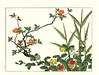 Japanese quince and strawberry (Japanese Flower and Bird Art) Tags: flower japanesequince chaenomeles japonica rosaceae strawberry duchesnea chrysantha hoitsu sakai kiitsu suzuki kimei nakano nihonga woodblock picture book japan japanese art readercollection