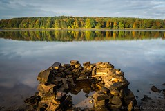 Stone Circle on Swinsty Reservoir (jasonmgabriel) Tags: swinsty reservoir water reflection stones circle trees autumn clouds
