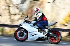 Ducati 899 Panigale 1610164654w (gparet) Tags: bearmountain bridge road scenic overlook motorcycle motorcycles goattrail goatpath windingroad curves twisties
