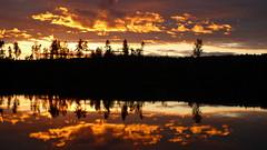 Enjoy the backlight!   [L1160635] (SeppoU) Tags: suomi finland lohja kesmkki summercottage syksy autumn npsy snapshot satunnaispoiminta randompick vastavalo backlight jrvi lake heijastus reflection pilvi cloud auringonlasku sunset leica dlux4 pokkari compact