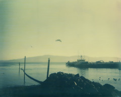 Scenes From Garibaldi (Celina Innocent) Tags: water reflection fishing boat birds pier rocks impossibleproject spectra instant film polaroidweek oregoncoast pacificnorthwest
