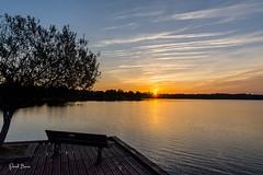 22102016-PBP_6073 (Berns Patrick) Tags: pins landes lac azur foret soleil matin ponton pigne