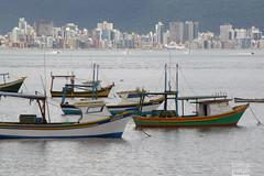 Dia de descanso (Ha1000) Tags: sea cidade praia beach water gua skyline boat mar barco group shore grupo portobelo santacatarina serra litoral brasilemimagens