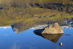 Skaftafell, IOceland (Schapekop) Tags: landscape iceland landschap skaftafell ijsland