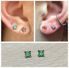Ear lobe piercings by Taylor Bell