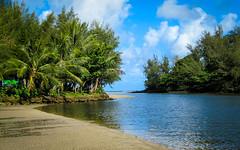 Hanalei Bay Kauai (tootalltom13) Tags: blue trees sky color colour water clouds canon landscape hawaii sand vivid powershot kauai tropical hanaleibay tomwebb canonpowershotsx200is copyrighttomwebb copyrightthomaswebb