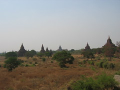 Many Pagodas of Bagan