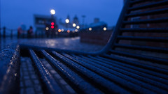 Wet Bench (AndrewHarveyPhoto) Tags: city blue trees winter sky plants color colour nature water rain weather night liverpool bench season outdoors scenery quiet exterior natural outdoor branches country seasonal lawn scenic calm nighttime hedge waterdrops watercovered