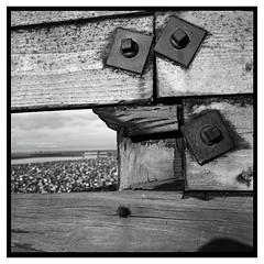 cleveleys_yashica_02 (D_M_J) Tags: uk bw white seascape black west tlr film beach water monochrome square lens landscape mono coast reflex sand break north twin lancashire mat 400 plus epson hp5 medium format ilford yashica breakwater cleveleys 80mm fylde v850