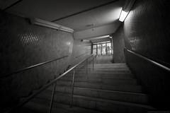 grafica_jp_flickr-1164 (grafica.tokyo) Tags: japan tokyo shinjuku sony voigtlander f45 ii 15mm a7 superwideheliar aspherical ilce7