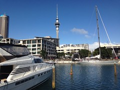 A lovely winter day in Auckland