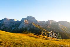 Col d'Aubisque (DOCESMAN) Tags: mountain france bike honda puerto pass moto motorcycle motor col pyrenees mountainpass pirineos deauville motorrad motorcykel aubisque moottoripyörä motocykel motorkerékpár nt700v ntv700 docesman mototsikl danidoces
